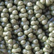 2x4mm Moss Green 'Farfalle' Beads [290+]