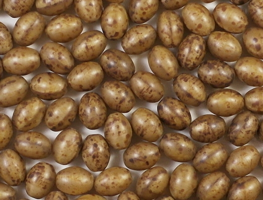 12mm Beige Picasso Oval Beads [10]