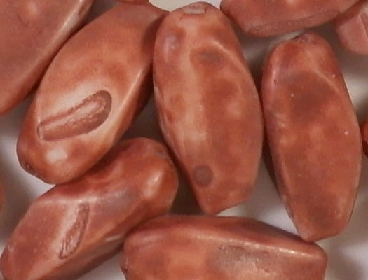 18mm Red Matte Ceramic Pinched Oval Beads [25]